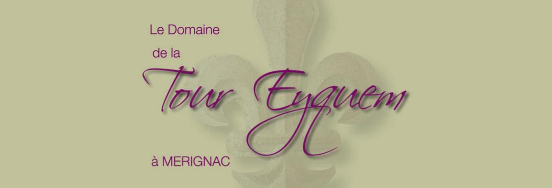 Présentation complète du Domaine de la Tour Eyquem